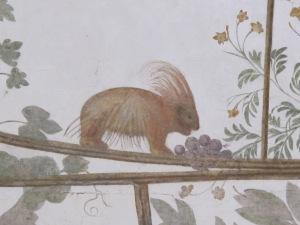 A porcupine ...